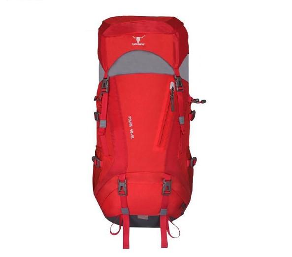 کوله پشتی 40 لیتری پکینیو مدل Polar 40+5